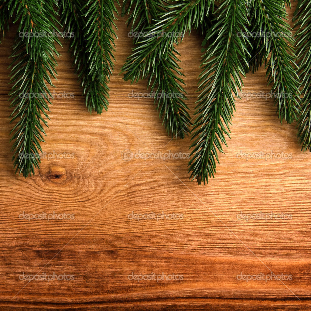 Christmas fir tree on the wooden board  Stock Photo #8143314