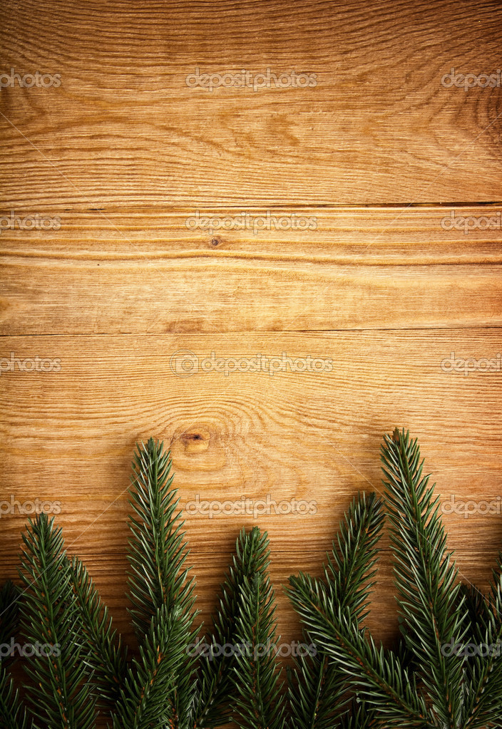 Christmas fir tree on the wood background  Stock Photo #8143361