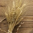 Spike of wheat — Stock Photo #9299168