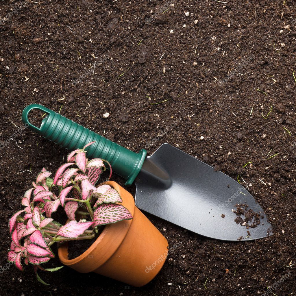 Close-up of the organic soil, spade and flower in pot — Stock Photo #9927244