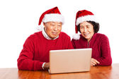 Senior Asian grandparents using computer — Stok fotoğraf