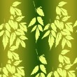 Pattern with leaves — Stock Photo