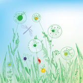 Dandelion and grass field — Stock Vector