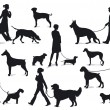 Walking with dogs - Stock Vector