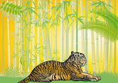 Asian Tiger in the jungle — Stock Vector