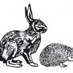 Rabbit and Hedgehog — Stock Vector