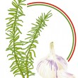Rosemary and Garlic — Imagen vectorial