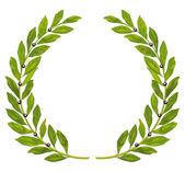 Laurel wreath and laurel — Stock Vector