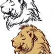 Royalty-Free Stock Vector Image: Lion in profile