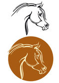 Thoroughbred horse head — Stock Vector