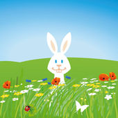 Rabbit on the meadow — Stock Vector