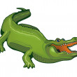 Stock Vector: Large alligator