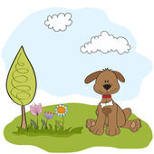 Spring greeting card with dog — Stock Photo