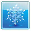 Star snow icon — Stock Vector