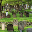 Old gravestones in cemetary — Stock Photo