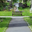 Royalty-Free Stock Photo: Path and bench in old cemetery