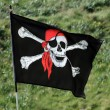 Pirate flag — Stock Photo #10659316