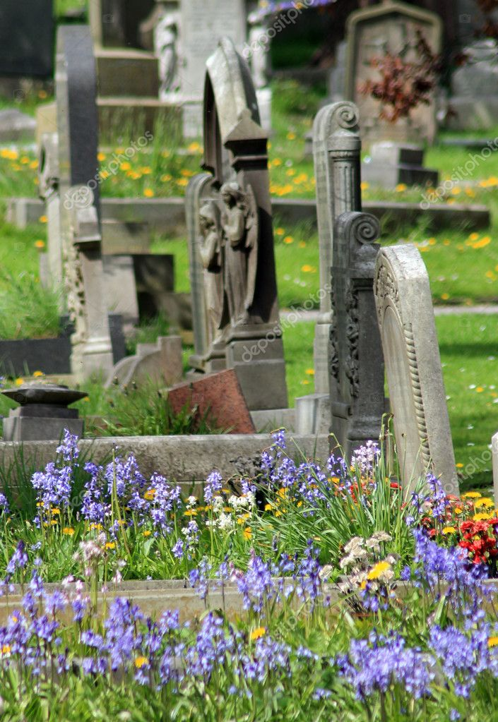 Old graves in cemetery with flowers in foreground. — Stock Photo #10659291