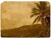 тропические горы и пальмовое дерево. старая открытка. — Стоковое фото