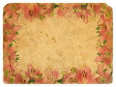Frame of pink lilies. Old postcard. — Stock Photo