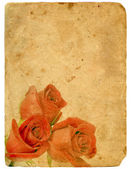 Bouquet of Roses. Old postcard. — Stock Photo
