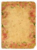 Telaio di gigli rosa. vecchia cartolina. — Foto Stock