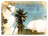 Coconut palm tree, hemel, wolken. oude ansichtkaart. — Stockfoto