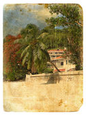 Paysage tropical. carte postale ancienne. — Photo