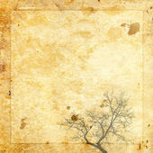 Paper background vintage tree — Stock Photo