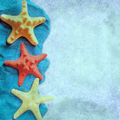 The square background with starfish — Stock Photo