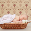 Stock Photo: Newborn sleeping child