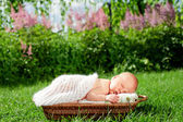 New born baby sleeps in basket — Stock Photo