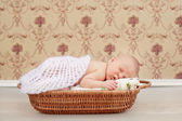 Newborn sleeping child — Stock Photo