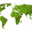 World map with leaf texture — Stock Photo #10597277