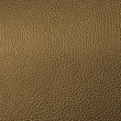 Leather texture — Stock Photo #8478215