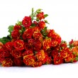 Bunch of red roses — Stock Photo