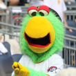 图库照片: Pittsburgh Pirate Parrot