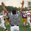 Football referee signals a touchdown — Stock Photo