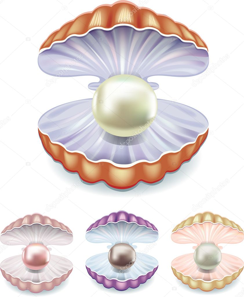Set of pearls in the shells of different colors — Stock ...