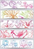 花とバナー — ストックベクタ