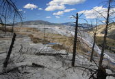 Mammoth Hot Springs in Yellowstone NP — Stock Photo