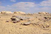 Manganês e o deserto branco — Foto Stock