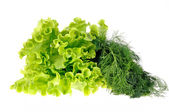Salad leaf and dill isolated on white background — Stock Photo