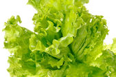 Green salad isolated on a white background — Stock Photo