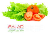 Fresh green salad and tomato isolated on white background — Stock Photo
