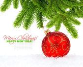 Christmas red ball and pine — Stock Photo