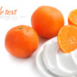 Cream with tangerines on a white background — Stock Photo #8473914