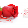 Two velvet hearts are with a red rose on a white background — Stock Photo #8881483