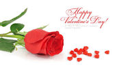 Red rose with candies by hearts on a white background — Stock Photo