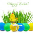 Stock Photo: Easter eggs and nest with a hen and chickens in green grass on w